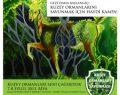 Kuzey Ormanları Savunması 7-8 Eylül Riva kampı,Kampla ilgili bilgilendirme ve acil ihtiyaç listesi