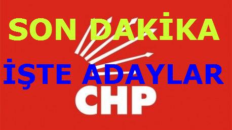 CHP_ADAYLAR