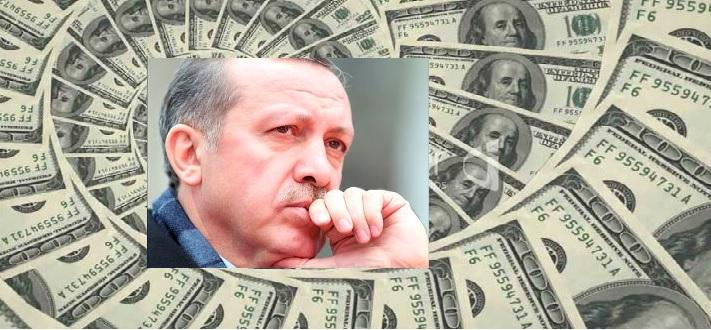Dolar Erdoğan