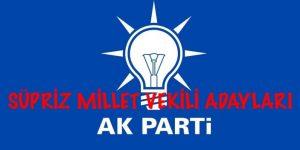 AKP Millet Vekili Aday Listesi