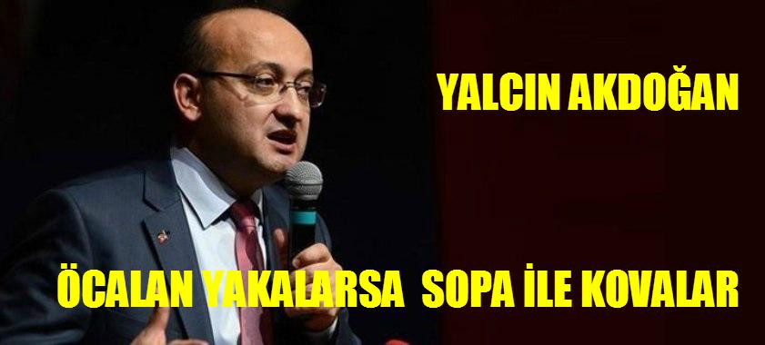 YALCIN-DOGAN-1