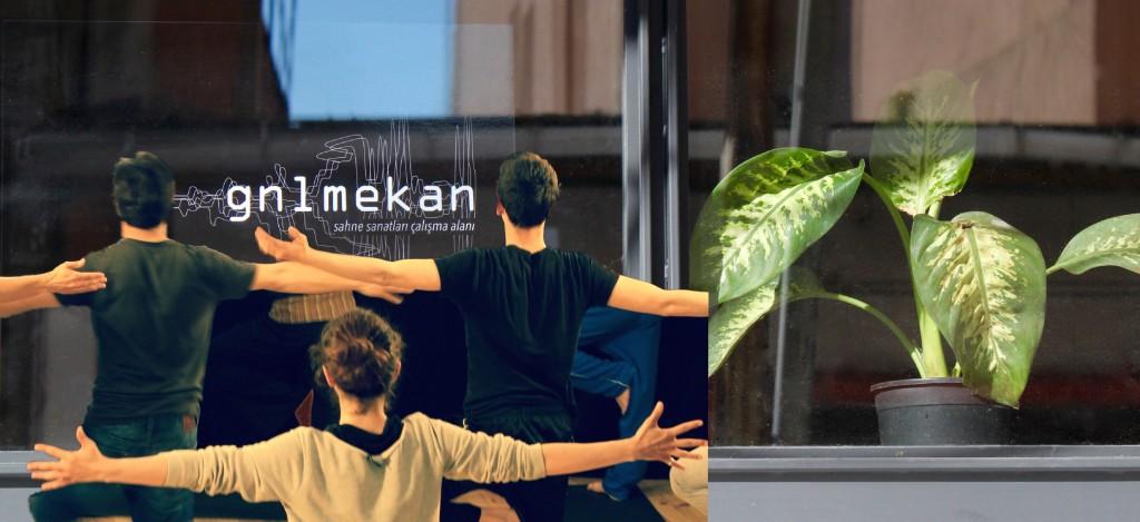 GNLMEKAN'DAN YAZ 2015 PROGRAMI