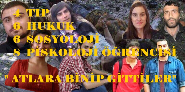 suruc_yazikoldu