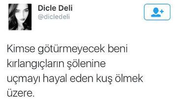 Dicle Deli