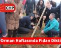 CHP Sarıyer Orman Haftasında Fidan Dikti