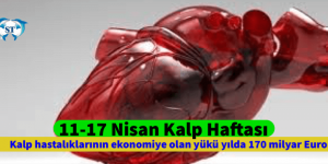 Kalp hastalıklarının ekonomiye olan yükü yılda 170 milyar Euro!