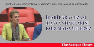 DİDEM ENGİN MECLİS'TE HAYVAN DOSTLARIMIZIN HAKLARINI HATIRLATTI