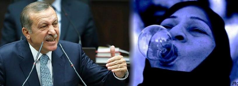 """Mahkeme Karar verdi. """"Ampulsün Sen Tayyip"""" Siyasi Hiciv  ve Eleştiri"""
