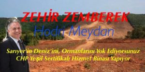 Mehmet Deniz, Bayraktara Hodri Meydan Dedi
