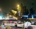 Eylemciler Sıcak Yuvalarında. Sarıyer Belediyesi Ağaçlara Müdahale Ediyor
