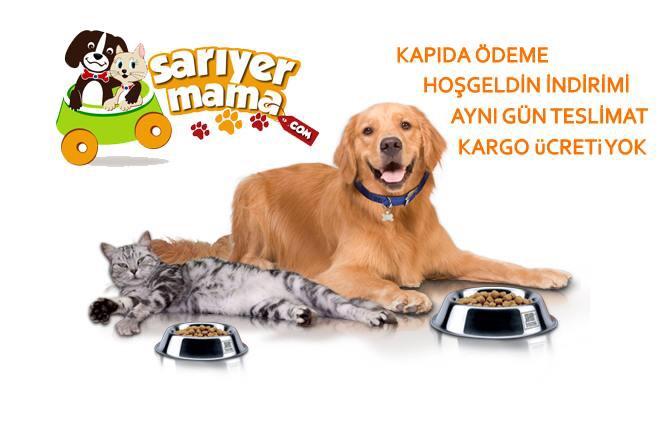Sarıyer'in ilk sanal petshop mağazası 'SARIYER MAMA' açıldı