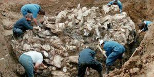 """""""Birleşmiş Milletler, Bosna Savaşı'nda bütün insanlık alemi önünde itibarını kaybetmiştir…"""""""