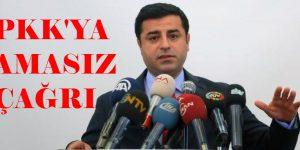 Demirtaş, PKK'nın Amasız Alarak Silahlı Eylemelerini  Durdurması Lazım