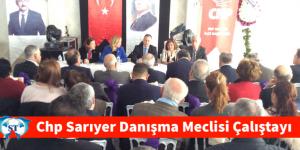CHP SARIYER DANIŞMA MECLİSİ ÇALIŞTAYI