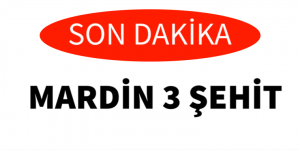 """ŞEHİT HABERLERİ DURMUYOR """" 3 ŞEHİT"""""""
