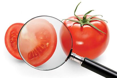 """Prof. Dr. Nevzat Artık: """"Güvenli gıda için ambalajlı ürünleri tercih edin"""""""