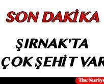 ŞIRNAK'TA ÇOK ŞEHİT VAR