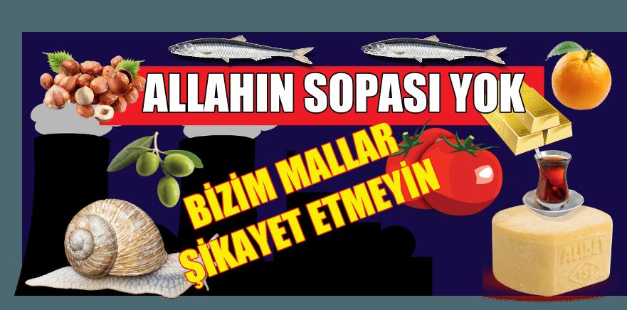 ALLAHIN SOPASI YOK Kİ BİZİM MALLARA VURSUN