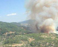 5 Yılda Çıkan 10 Bin 130 Orman Yangınının 5.862'sinin Çıkış Nedeni Aydınlatılamamış