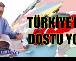 TÜRKİYE'NİN DOSTU YOK!
