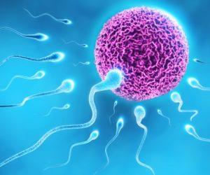 Ölü Erkeklerden Sperm Bağışı
