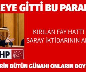 """""""KIRILAN FAY HATTI DEĞİL, SARAY İKTİDARININ AR DAMARI"""""""