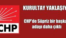 CHP'de Süpriz bir başkan adayı daha çıktı