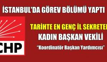 CHP İstanbul İl Başkanlığı Görev Bölümü Yaptı