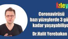 Dr.Halit Yerebakan, Coronavirüsü bazı yüzeylerde 3 güne kadar yaşayabiliyor