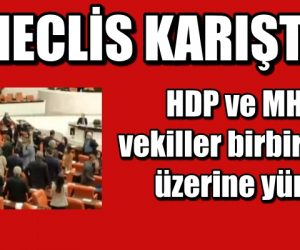 Meclis karıştı! HDP ve MHP'li vekiller birbirlerinin üzerine yürüdü
