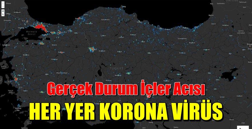 Türkiye Koronavirüs Haritası
