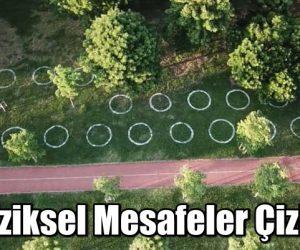 """Kadıköy Caddebostan """"fiziksel mesafe"""" için işaretler çizildi"""