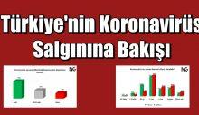 Türkiye'nin Koronavirüs Salgınına Bakışı