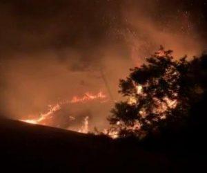 Sarıyer, Garipçe'de sabaha karşı korkutan yangın!