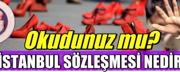 İstanbul Sözleşmesi Nedir: İşte Tam Metni