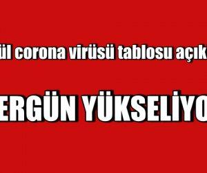 Türkiye'nin günlük corona virüsü tablosunu açıkladı