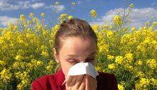 Sonbahar alerjisini Covid-19 ile karıştırmayın