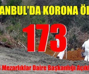 İstanbul'da 173 kişinin daha 'bulaşıcı hastalık' nedeniyle hayatını kaybetti
