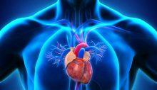 Abdominal aort anevrizması nedir, neden olur? İşte tedavi yöntemleri