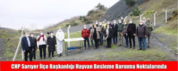 CHP Sarıyer İlçe Başkanlığı Hayvan Besleme Noktalarını İnceledi