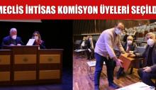 MECLİS İHTİSAS KOMİSYON ÜYELERİ SEÇİLDİ