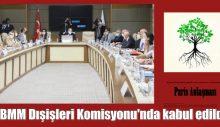 Paris Anlaşması, TBMM Dışişleri Komisyonu'nda kabul edildi